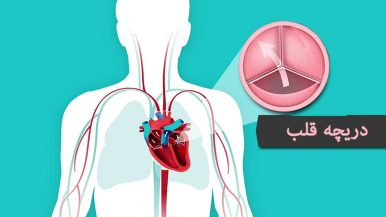 Heart Valve Bicuspid بیزینس پلن دریچه قلب ویزای آلمان استارتاپ