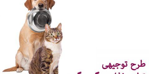طرح توجیهی استارتاپ تولید غذای سگ و گربه ( حیوانات خانگی )